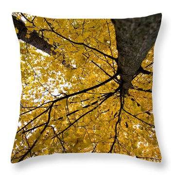 Look Up It Is Fall Throw Pillow