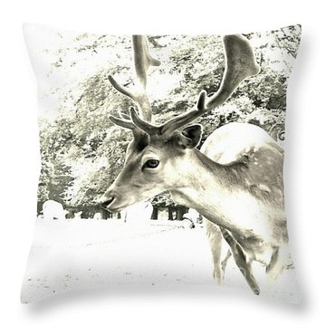 Looking At You Throw Pillow