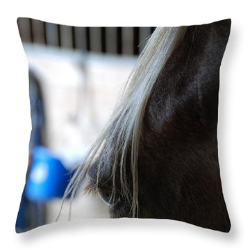 Throw Pillow featuring the photograph Looking Forward by Jennifer Ancker