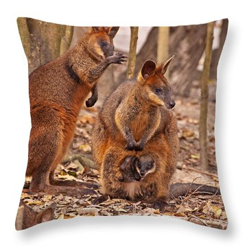 Looking Out From The Safety Of The Pouch Throw Pillow by Bob and Nancy Kendrick