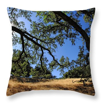 Looking Through The Oaks Throw Pillow by Donna Blackhall