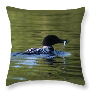 Loon With Minnow Throw Pillow by Steven Clipperton