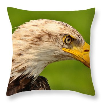 Lord Of The Wings Throw Pillow