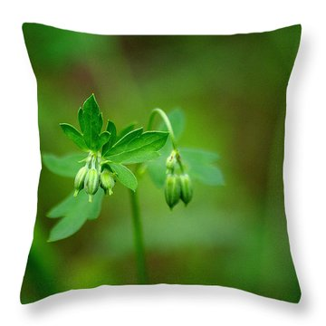 Throw Pillow featuring the photograph Lost But Not Forgotten by Vicki Pelham