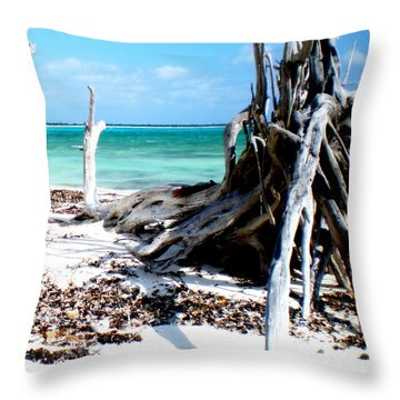 Throw Pillow featuring the photograph Cozumel Mexico  Paradise On Earth by Danielle  Parent