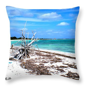 Throw Pillow featuring the photograph Lost Paradise The Sequel 2 by Danielle  Parent