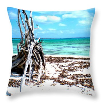 Throw Pillow featuring the photograph Lost Paradise The Sequel 3 by Danielle  Parent