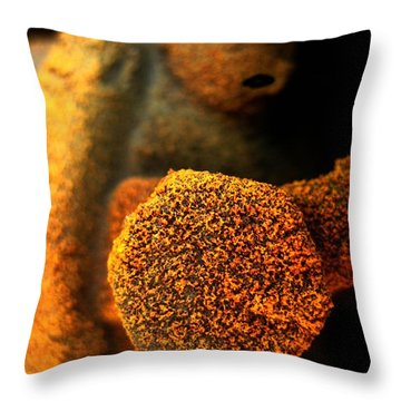 Lost  Throw Pillow by Shirley Sirois