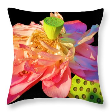 Lotus Beauty Throw Pillow