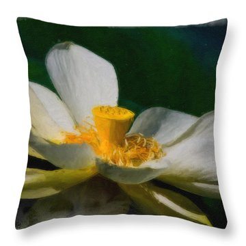 Throw Pillow featuring the photograph Lotus by Travis Burgess