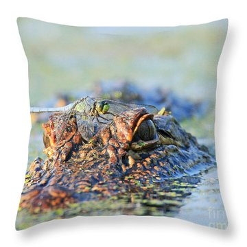 Throw Pillow featuring the photograph Louisiana Alligator With Dragon Fly by Luana K Perez