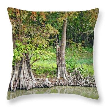 Throw Pillow featuring the photograph Louisiana Cypress by Lizi Beard-Ward