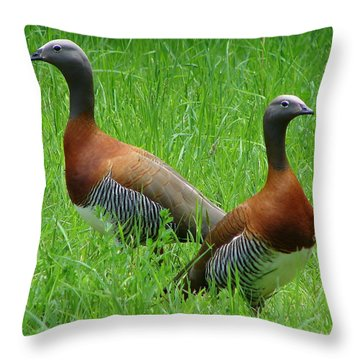 Throw Pillow featuring the photograph Love Birds by Ramona Johnston