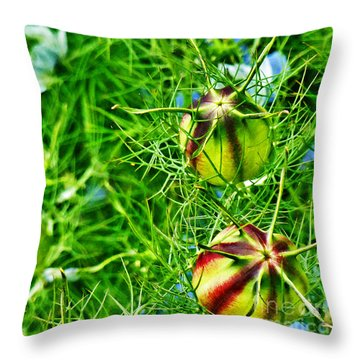 Throw Pillow featuring the photograph Love In A Mist by Steve Taylor