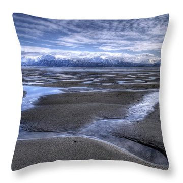 Throw Pillow featuring the photograph Low Tide by Michele Cornelius