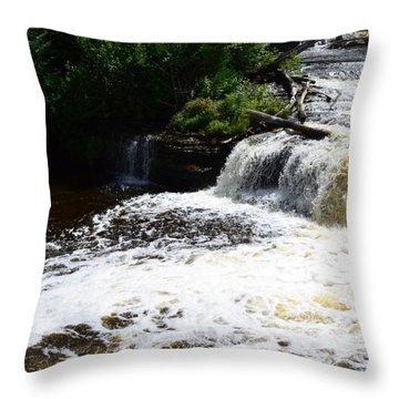 Lower Tahquamenon Falls Lll Throw Pillow