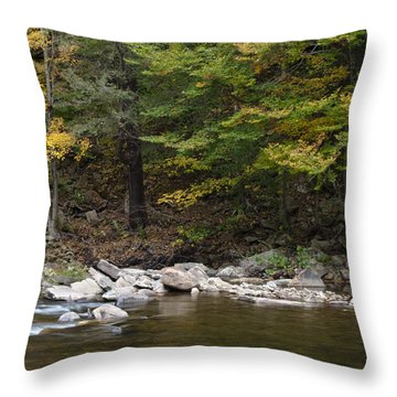 Loyalsock Creek Flowing Gently Throw Pillow