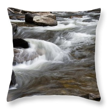 Loyalsock Creek Gentle Rapids Throw Pillow