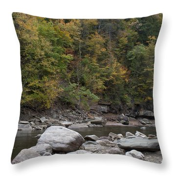Loyalsock Creek Worlds End State Park Throw Pillow