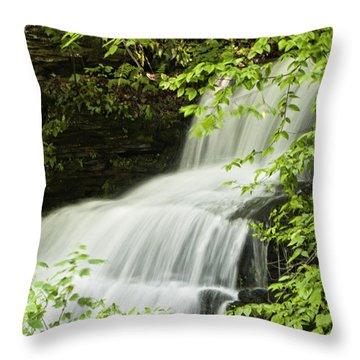 Loyalsock Waterfall Throw Pillow