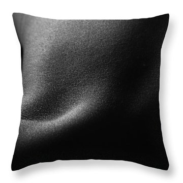 Lr004 Throw Pillow by Catherine Lau