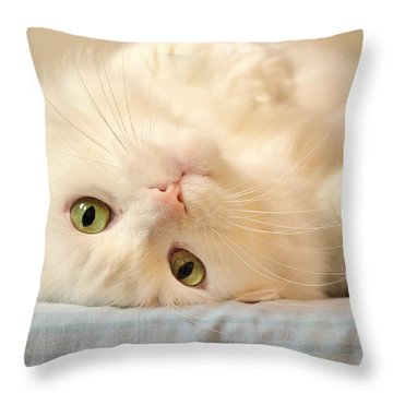 Lucky Bum Throw Pillow