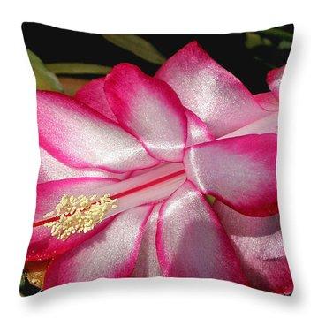 Luminous Cactus Flower Throw Pillow by Kaye Menner