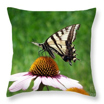 Lunch Time Throw Pillow by Dorrene BrownButterfield