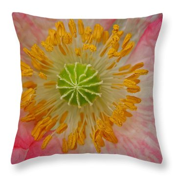 Macro Mystery Throw Pillow
