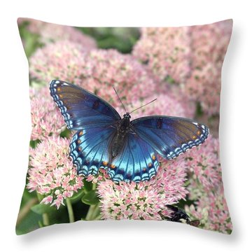 Madam Blue Throw Pillow
