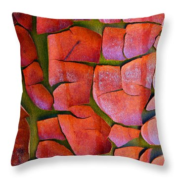 Madrone Throw Pillow