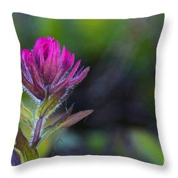 Magenta Paintbrush Throw Pillow by Sean Griffin