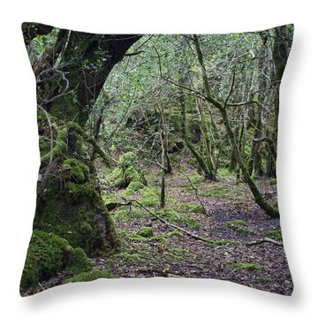 Throw Pillow featuring the photograph Magical Forest by Hugh Smith