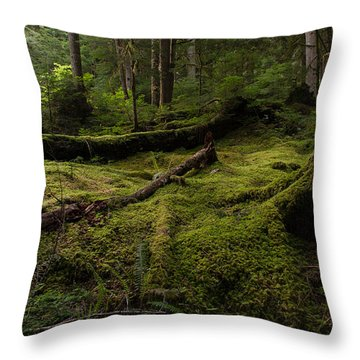 Magical Forest Throw Pillow by Mike Reid