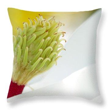 Magnificant Magnolia Macro  Throw Pillow by Sabrina L Ryan