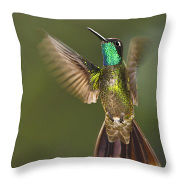 Magnificent Throw Pillow by Tony Beck