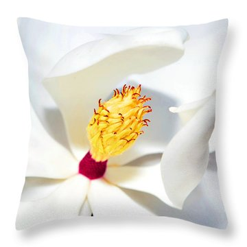 Magnolia Bloom Throw Pillow by Susan Leggett