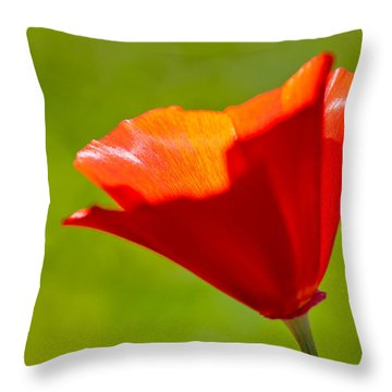 Mahogany California Poppy IIi Throw Pillow by Heidi Smith