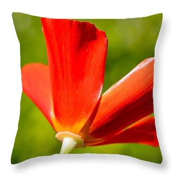 Mahogany California Poppy Iv Throw Pillow by Heidi Smith