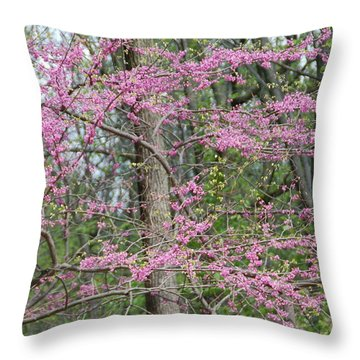 Majestic Throw Pillow by Aimee L Maher Photography and Art Visit ALMGallerydotcom