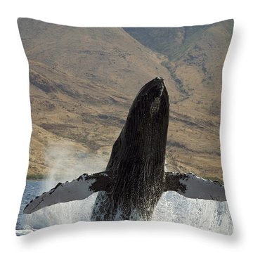 Majestic Breaching Whale Throw Pillow by Dave Fleetham