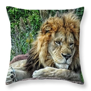Majestic Throw Pillow by Tazz Anderson