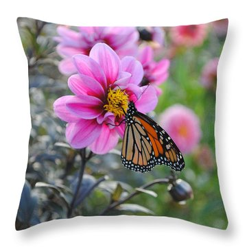 Throw Pillow featuring the photograph Making Things New by Michael Frank Jr