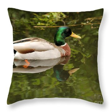 Male Mallard Duck With Reflection Throw Pillow