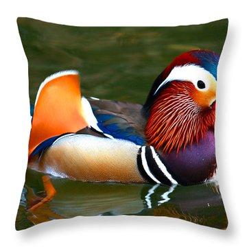 Male Mandarin Throw Pillow