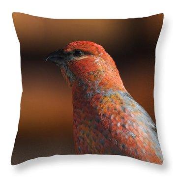 Male Pine Grosbeak Throw Pillow