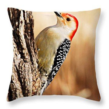 Male Red-bellied Woodpecker 3 Throw Pillow