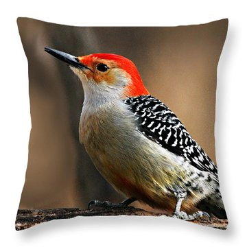 Male Red-bellied Woodpecker 4 Throw Pillow by Larry Ricker