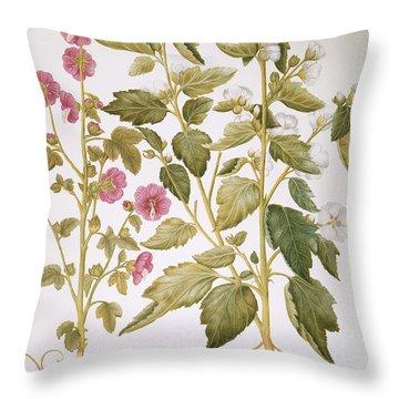 Mallow, 1613 Throw Pillow