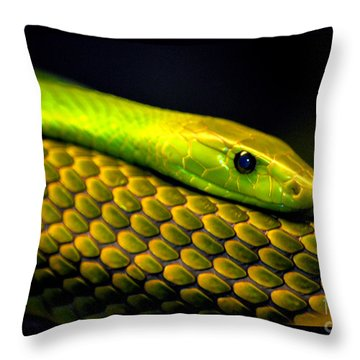 Mamba On Mamba Throw Pillow by Susanne Still